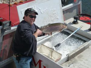 kdc_trout_stocking_2011_-_1