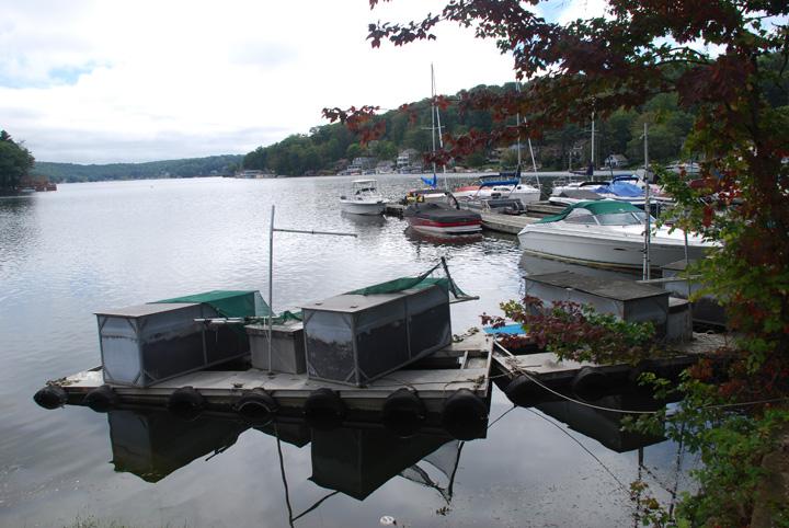 2011_Flooding_-_13