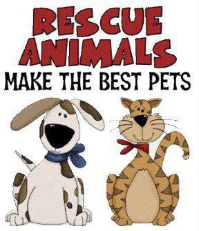 rescue_animals