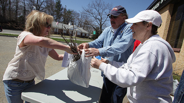 Dorothy Pedini, left, gets help from Hopatcong Environmental Commission volunteers Bradley and Pat Hoferkamp with tree seedlings she will plant in her yard as part of the Tree Recovery Campaign hosted by the Hopatcong Environmental Commission, Saturday, April 19.