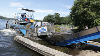 Weeds from Lake Hopatcong are offloaded from a harvester via a conveyor and into a dump truck. (2013 LHN file photo)