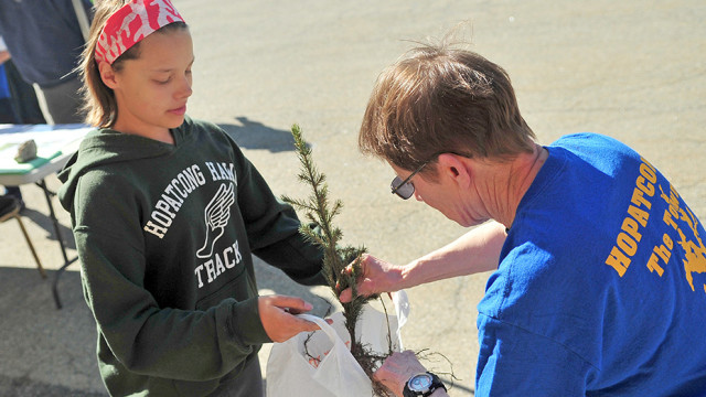 A Norway spruce sapling is bagged by Shea Schindelar, 11, and Georgia Schilling, a member of the environmental commission.