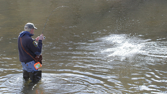 Kevin Presutti from Pompton Plains hooks a trout while fishing in the Rockaway River along Berkshire Valley Road.